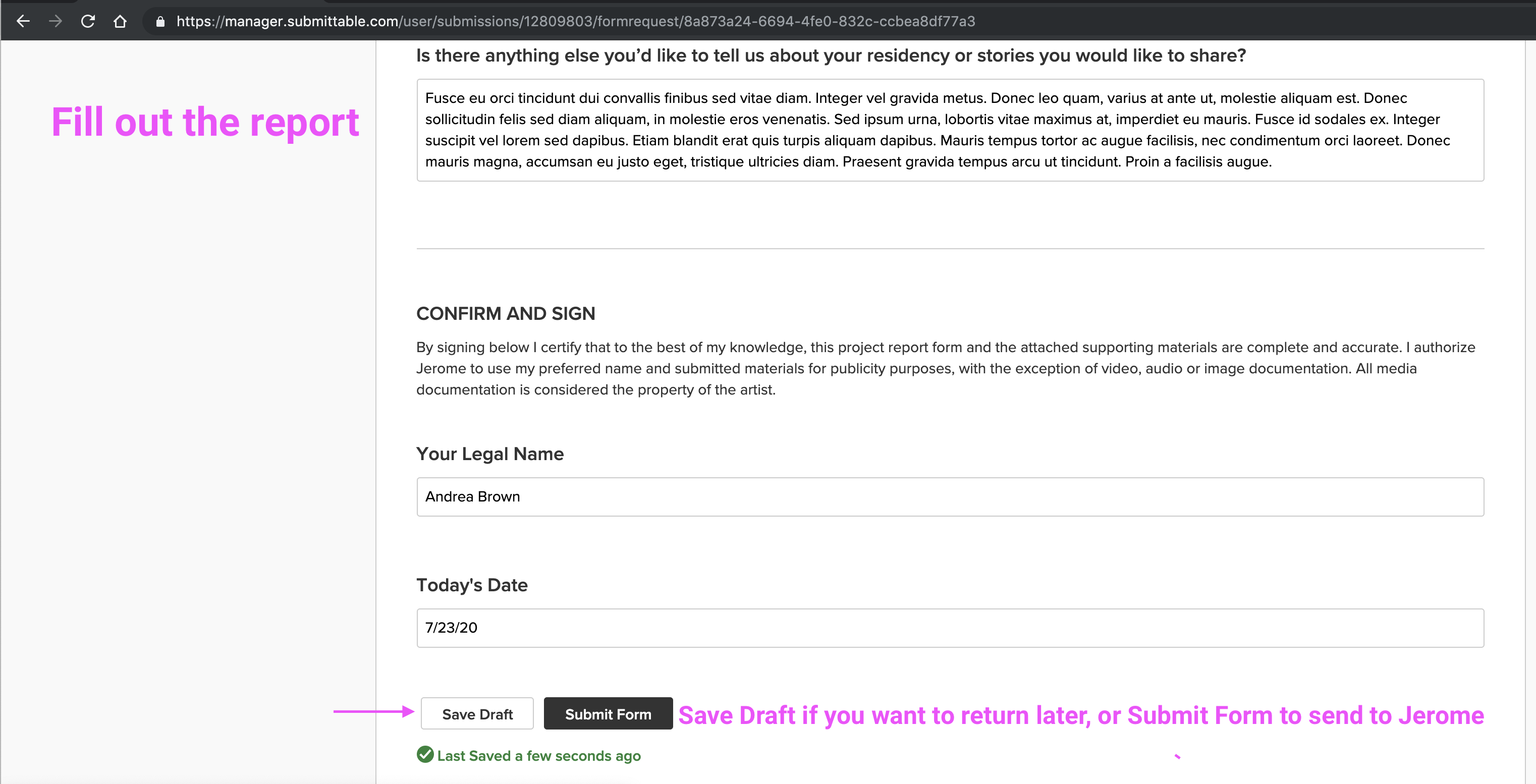 View of the Report on Submittable, showing the Save Draft and Submit Form buttons.
